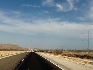The I-10: cruel master to man and bug alike (photos courtesy John Graney)