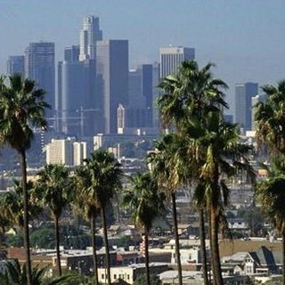 Palm_trees_and_the_downtown_los_angeles_skyline_sca048