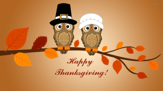 Thanksgiving-owls-2015-3-900x506